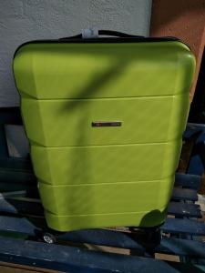 grüner Koffer