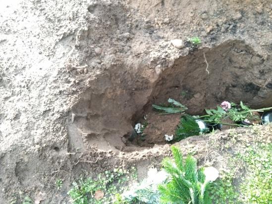 Urnenreihengrab - ofen mit Blumen und Erde